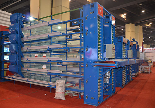Layer cage with a conveyor system